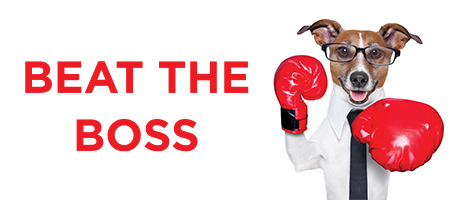Beat the Boss promotion, dog wearing boxing gloves, glasses, and a shirt & tie